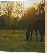 Sunset Over A Spring Meadow Wood Print