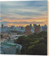 Sunset Over Clarke Quay And Fort Canning Park Wood Print