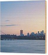 Sunset Over Downtown Manhattan Wood Print
