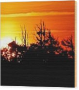Sunset Over Hatteras Maritime Forest Wood Print