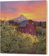 Sunset Over Mt Hood And Red Barn Wood Print