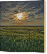 Sunset Over North Pas De Calais In France Wood Print