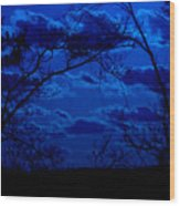 sunset over Suwanee 2009 Wood Print