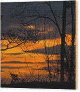 sunset over Suwanee 2010 Wood Print