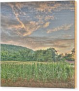 Sunset Over The Fields Wood Print