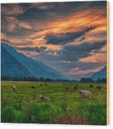 Sunset Over The Pasture Wood Print