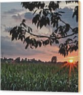 Sunset Over The Plains Wood Print