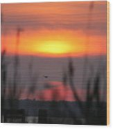 Sunset Over The Reeds Wood Print