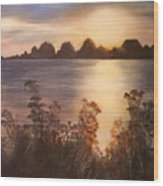 Sunset Over Westham Island Wood Print