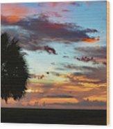 Sunset Palm Florida Wood Print