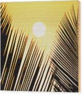Sunset Palm Fronds Wood Print