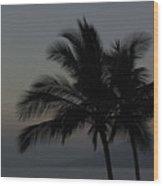 Sunset Palm Wood Print