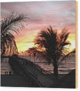 Sunset Palms At Sharky's On The Pier Wood Print