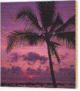 Sunset Palms Wood Print