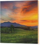 Sunset Pasture Wood Print