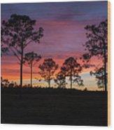 Sunset Pines Wood Print