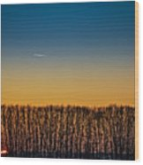 Sunset Plane Wood Print