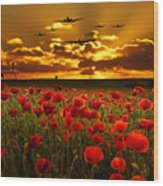 Sunset Poppies The Bbmf Wood Print