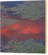 Sunset Reflection In Pond Wood Print