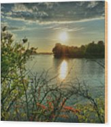 Sunset Reflection Wood Print