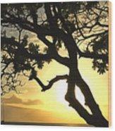 Sunset Revival Wood Print