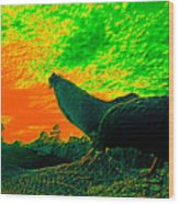 Sunset Rooster Wood Print