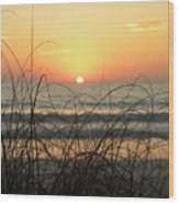 Sunset Sea Grass Wood Print