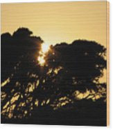 Sunset Silhouette II Wood Print