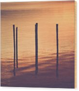 Sunset Silouette Wood Print