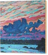 Sunset Snails Wood Print