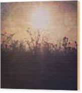 Sunset Song Wood Print