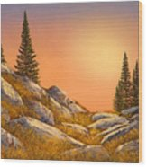 Sunset Spruces Wood Print