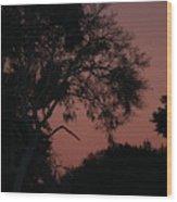 Sunset St Augustine Wood Print