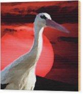 Sunset Stork Wood Print