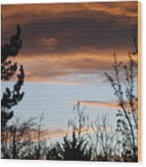 Sunset Thru The Trees Wood Print