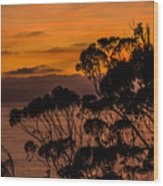 Sunset /torrey Pines Image 2 Wood Print