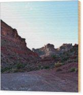 Sunset Tour Valley Of The Gods Utah 07 Wood Print