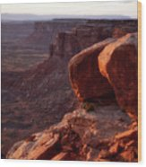Sunset Tour Valley Of The Gods Utah Vertical 01 Wood Print