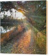 Sunset Trails  Wood Print
