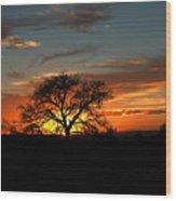 Sunset Tree Wood Print