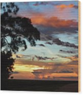 Sunset Tree Florida Wood Print