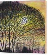 Sunset Tree Silhouette Wood Print