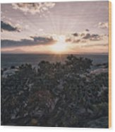 Sunset Valley Of The Gods Utah 01 B Wood Print