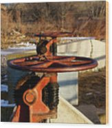 Sunset Water Works Wood Print by Christopher Wood