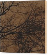 Sunset Winter Wood Print