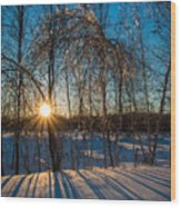 Sunset Winter Shadows Wood Print
