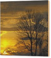 Sunset With Backlit Trees Wood Print
