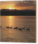 Sunset With Geese 2 Wood Print