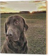 Sunset With My Good Boy Brownie  Wood Print
