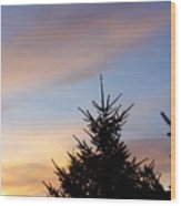 Sunset With Two Pine Trees Wood Print